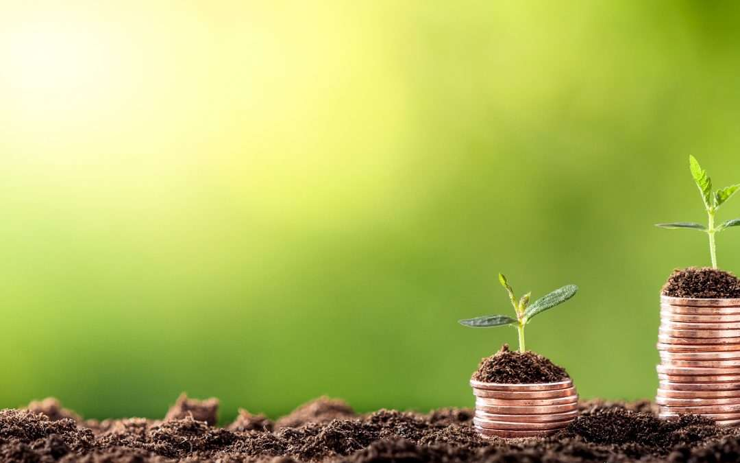 Sustainability Planning