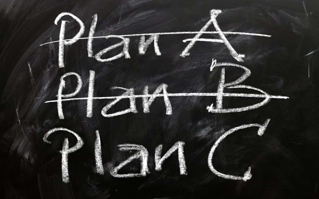 Flexible Plan | Out of the Nursing Home